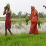Tripura approves Rs 6000 assistance to farmers