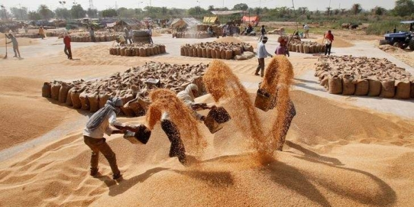 India eyes record 285.2 MT foodgrain output in 2018-19