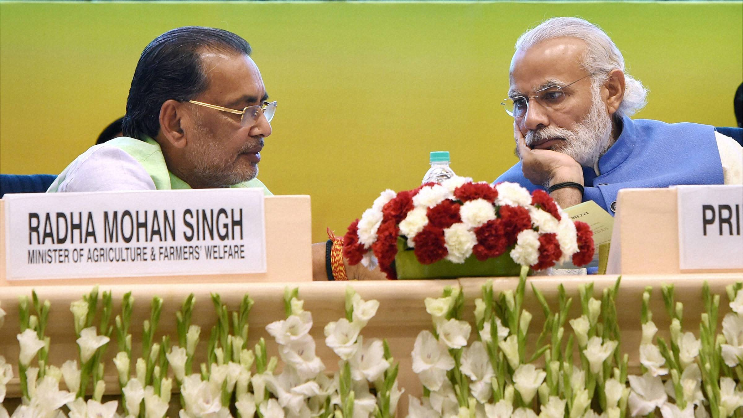 India mulling farm package ahead of 2019 general polls