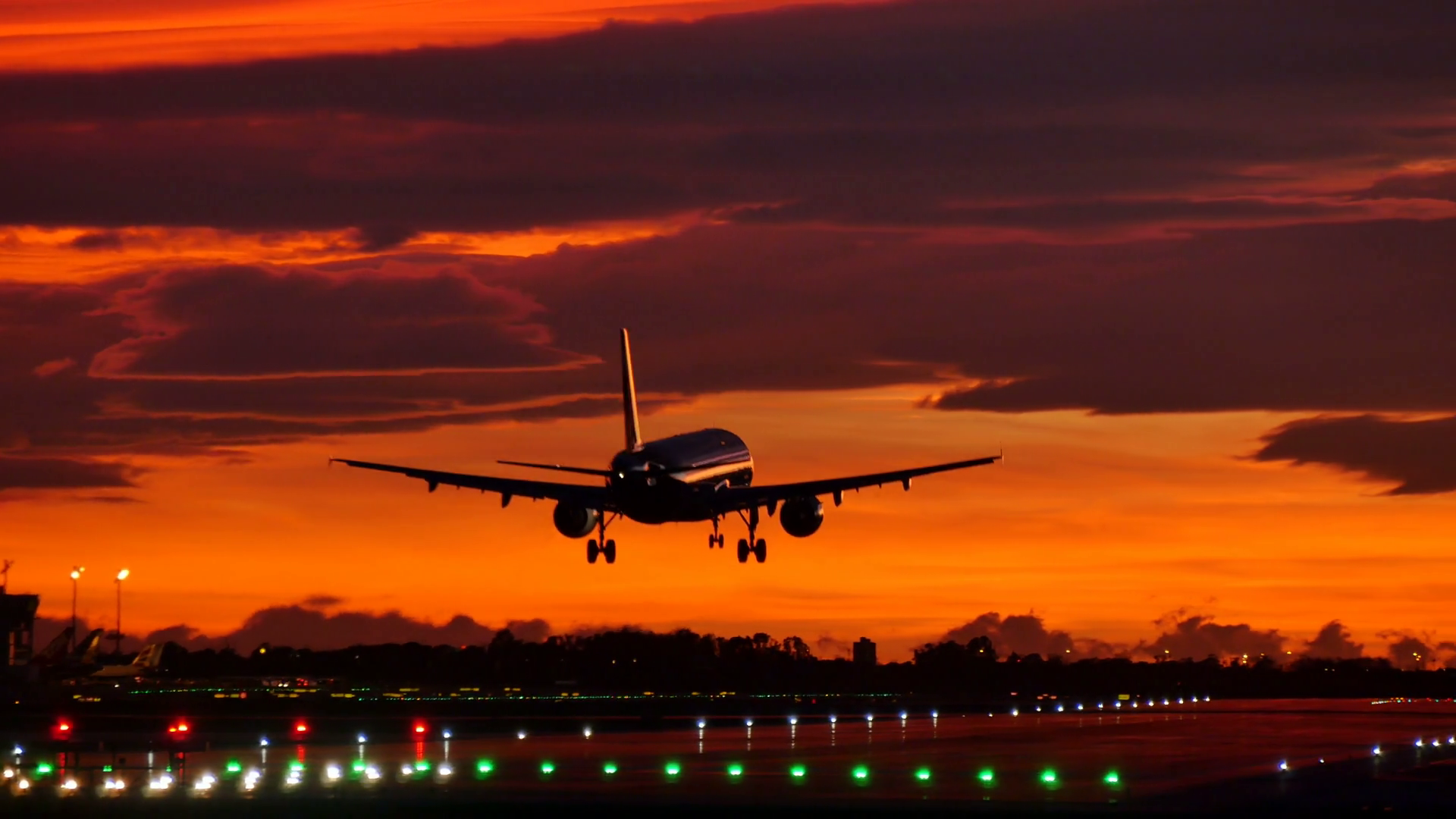 At 138.9 million, number of domestic flyers grows 18.6% in 2018: DGCA
