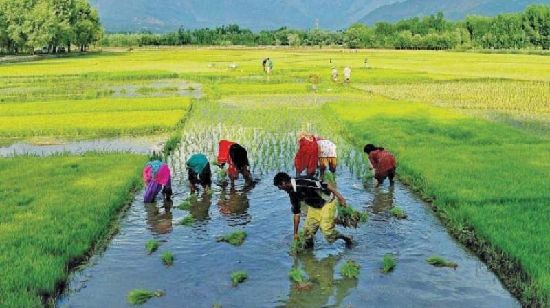 India announce package to boost farmers' income soon