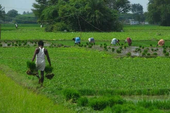 Maharashtra government's farm loan waiver scheme a sham, claims Congress