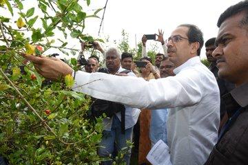 Consensus on Uddhav Thackeray to lead Maharashtra government: Sharad Pawar