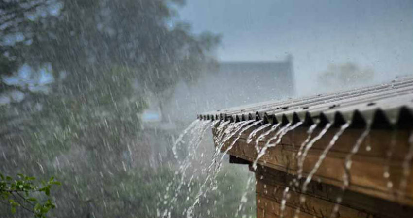 Monsoon progress likely to slow this week
