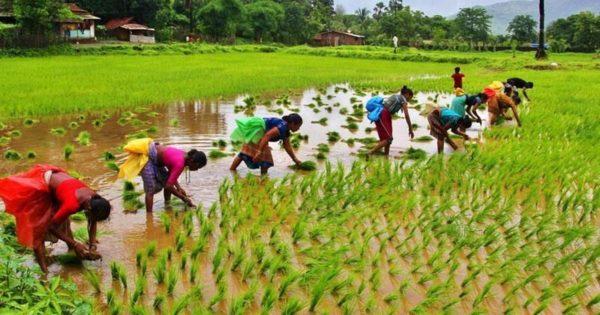 Anti-farmer BJP acting like Kauravas against farmers: Congress