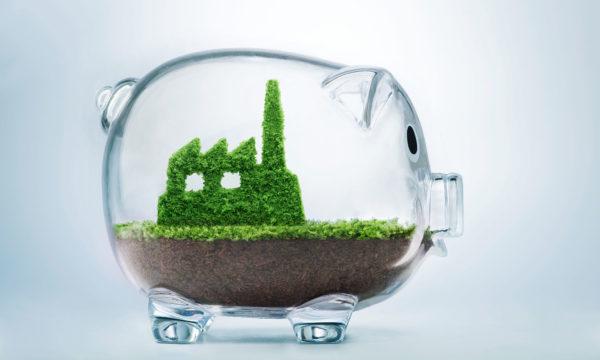 Karnataka eyes 50% of $100 billion bio-economy by 2025