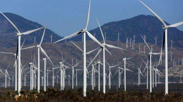 Dharmendra Pradhan invites investors to join India's renewable energy journey