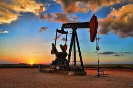 India may take oil from Iran, Venezuela again under new US admin