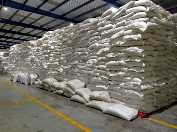 India gifting 2,000 metric tonnes of rice to Syria: MEA