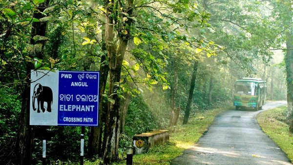 Odisha to identify more locations for nature & eco-tourism
