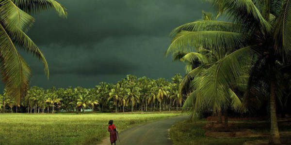 Monsoon to make early arrival over Kerala