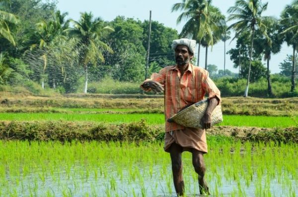 India, Fiji sign MoU for cooperation in the field of agriculture and allied sectors